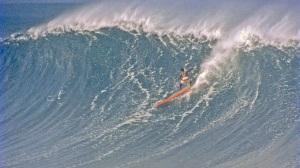 large_Hawaiian_2_PUBS