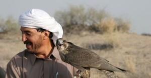 Disarming-Falcons-Key-Image-Photo-by-Albert-Larew-580x300